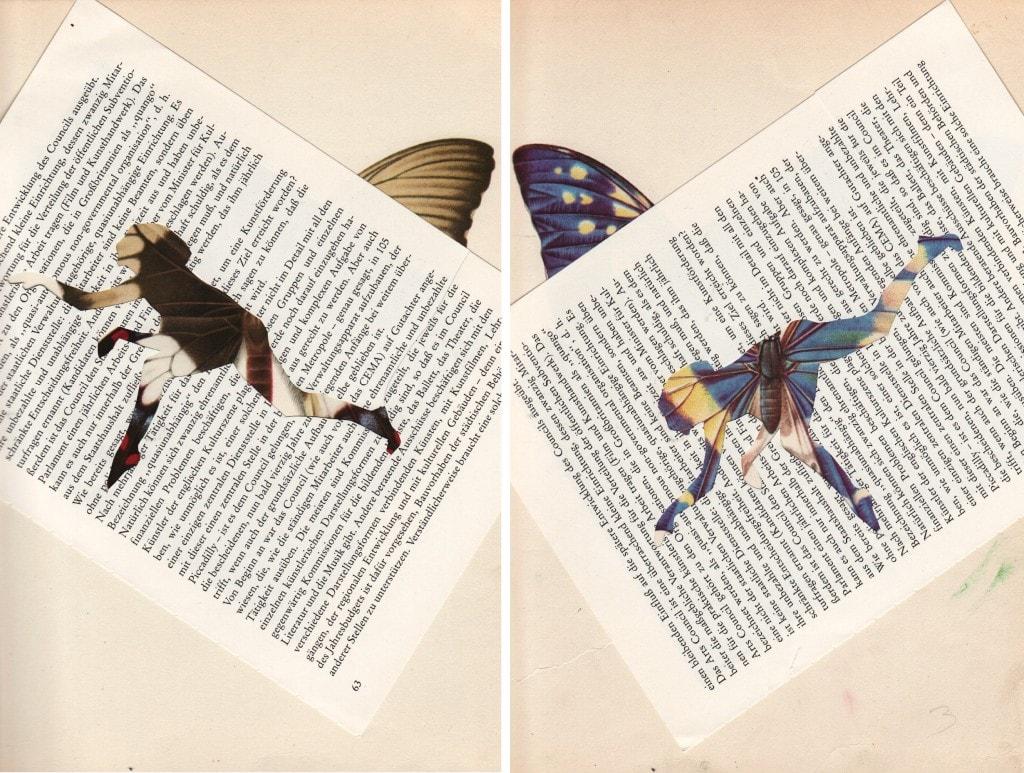 butterflydance-collage