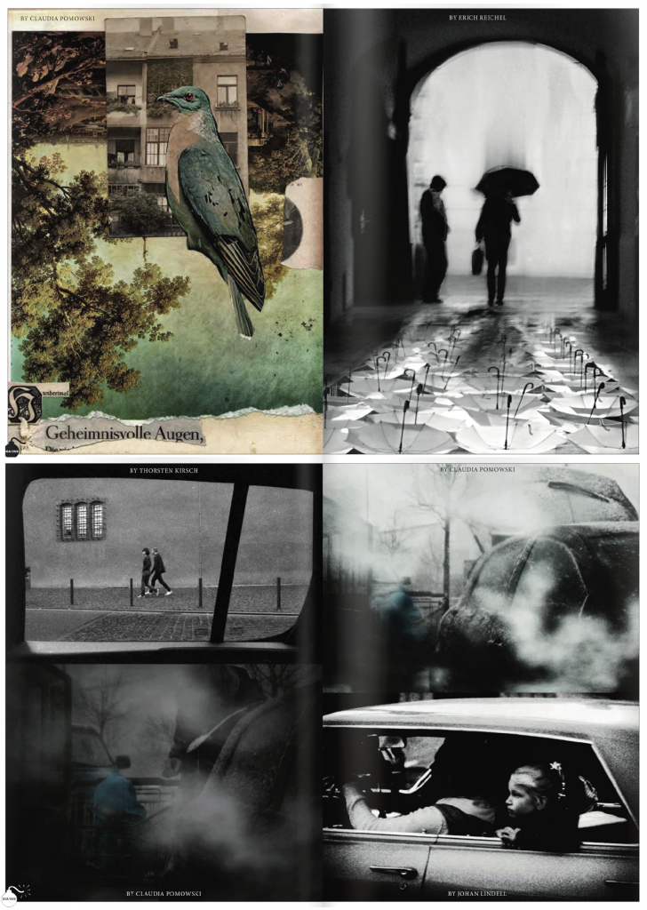 Visions libres#11_ Claudia Pomowski_Photo:Collage